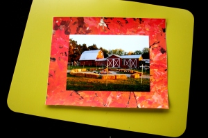 2013-11-05 Fall  Matte with Pic of Anita's barn 010